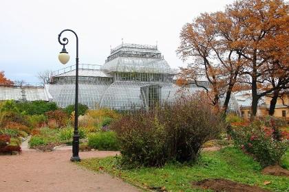 Оранжерея Ботанического сада Петра Великого в СПб