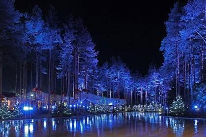Каток в «Охта Парке» ночью
