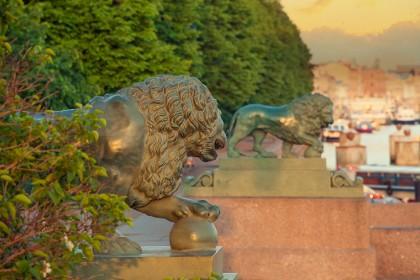 Львы на Адмиралтейской набережной в Петербурге