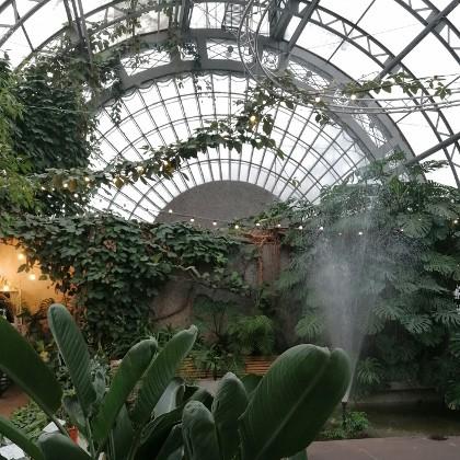 Фонтан оранжереи Таврического сада в СПб
