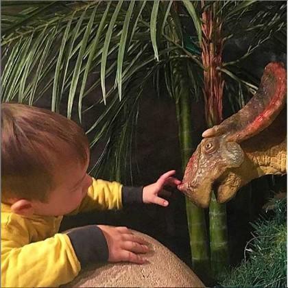 """Знакомство с динозавром в """"Планете динозавров"""" в СПб"""