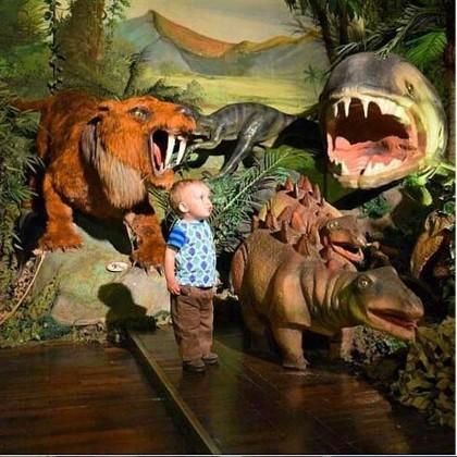 Экспозиция музея «Планета динозавров» в СПб