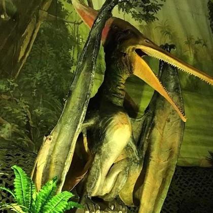 """Фигура птерозавра в """"Планете динозавров"""""""