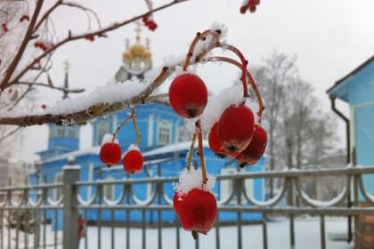 Церковь святого великомученика Димитрия Солунского в Санкт-Петербурге в СПб зимой