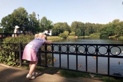 Пруд Удельного парка в СПб